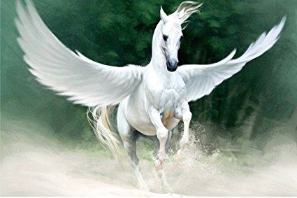 Pegasi and Unicorns
